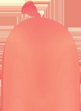 Fashion Coral Q-Pak 260Q
