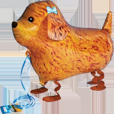 Poodle Airwalker 29in/72.5cm