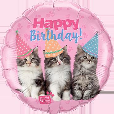 Studio Pets - Birthday Kittens Foil Round 18in/45cm