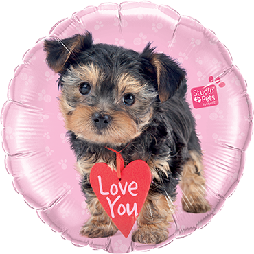 Studio Pets - Love You Terrier Foil Round 18in/45cm