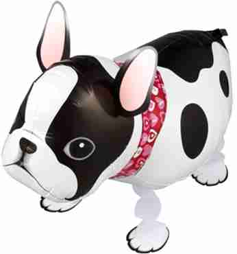 French Bulldog Airwalker 21in/52.5cm