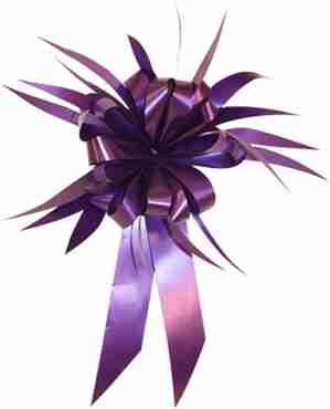 Purple MasterBow Starburst Bow