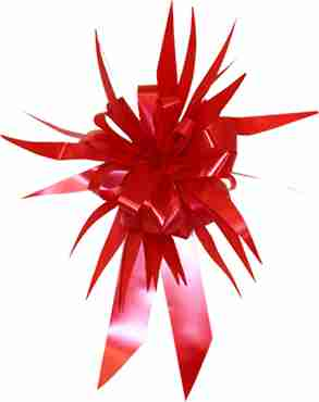 Red MasterBow Starburst Bow