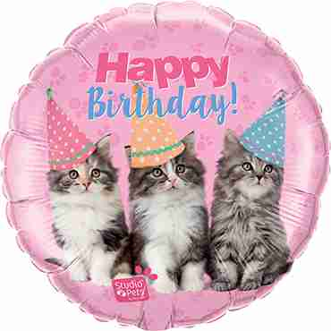 Studio Pets - Birthday Kittens Foil Round 18in/45cm