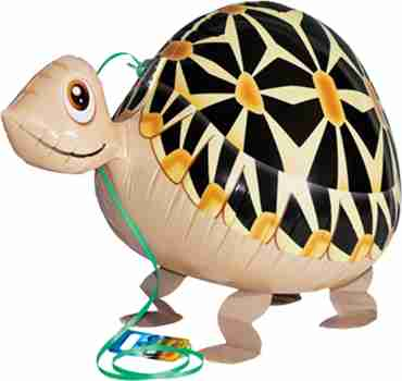 Tortoise Airwalker 22in/55cm
