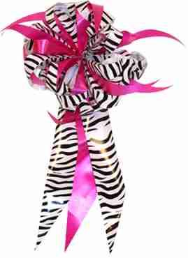 Zebra/Fuchsia MasterBow Starburst Bow